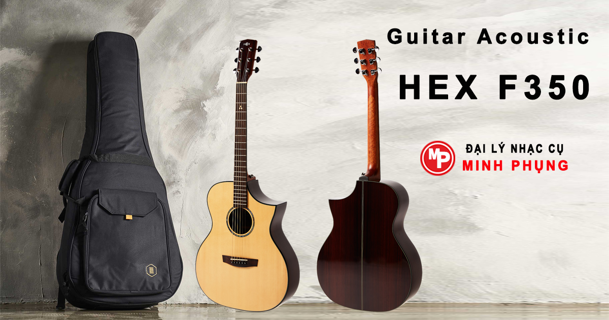 Đàn Guitar Hex Acoustic F350