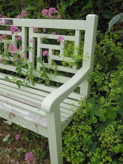 drewniana ławka wśród kwiatów
