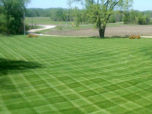 Garcia S Tree Service Professional Lawn Care In Utah County