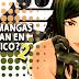 ¿Qué mangas hacen falta en México? 2a Parte