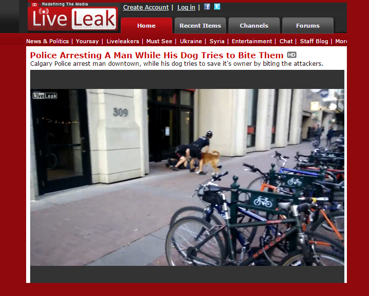 Liveleak Best video sharing sites