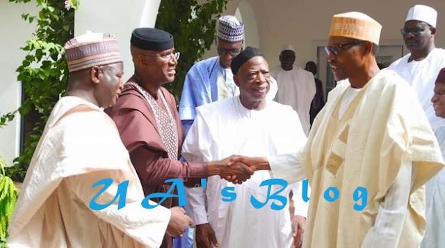 Saraki disbands pro-Buhari support group in senate