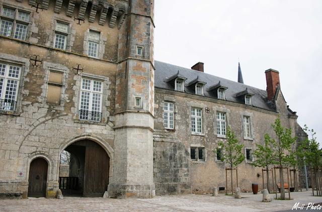 M-ii Photo : Les Châteaux de la Loire - Talcy