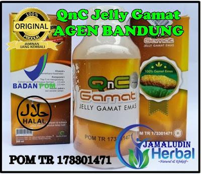 http://arumherbal30.blogspot.com/p/qnc-jelly-gamat-agen-bandung.html