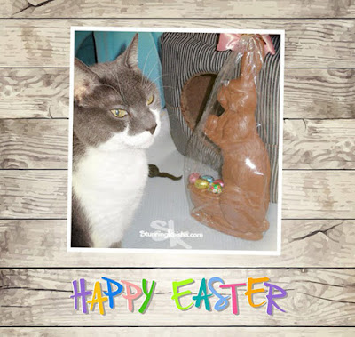Happy Easter from The Cat