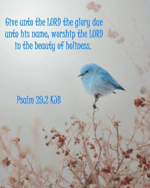 Name Unto Psalm Glory 2 His Due Lord 29 Unto Lord Worship Beauty Give