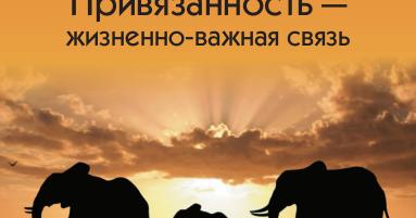 ПРИВЯЗАННОСТЬ ЖИЗНЕННО-ВАЖНАЯ СВЯЗЬ ОЛЬГА ПИСАРИК СКАЧАТЬ БЕСПЛАТНО