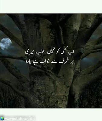 Ab Kisi Ko Nahi Talb Meri,  Her Tarf Say Jawab Hai Yaroo..!!  #sadshayari #urdushayari #shayari