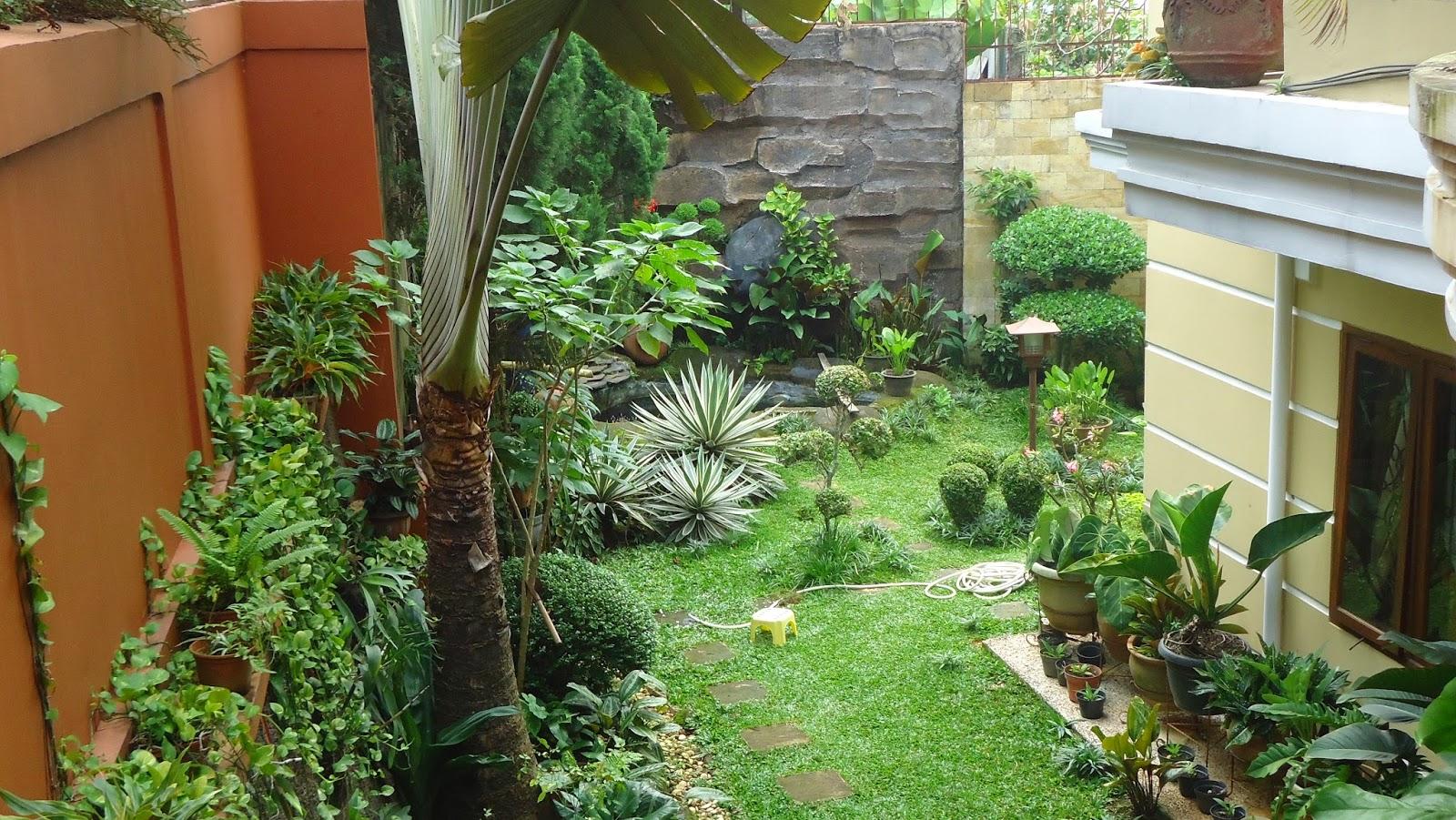 Contoh Gambar Desain Taman Minimalis Di Luar Rumah Tinggal