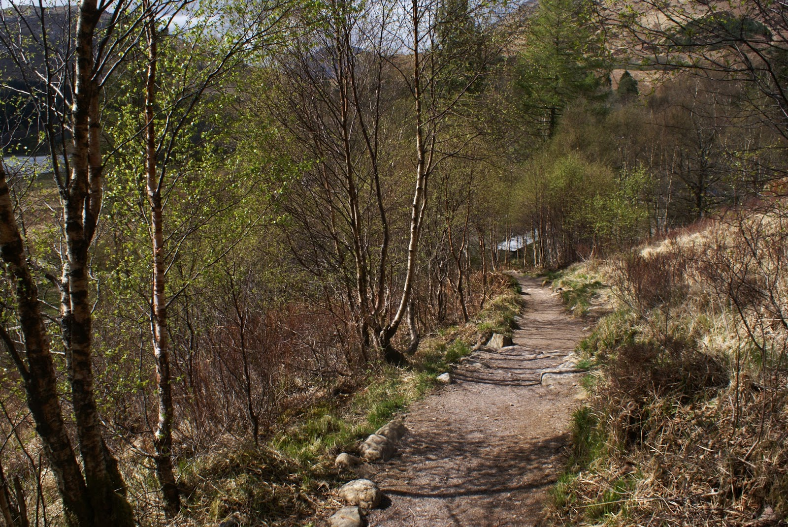 glenfinnan path scotland uk highlands travel