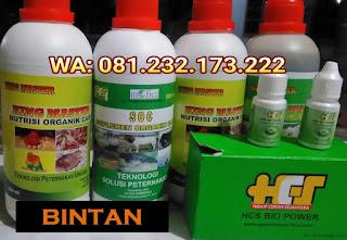 Jual SOC HCS, KINGMASTER, BIOPOWER Siap Kirim Bintan Bandar Seri Bentan