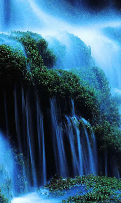 imagenes de naturaleza