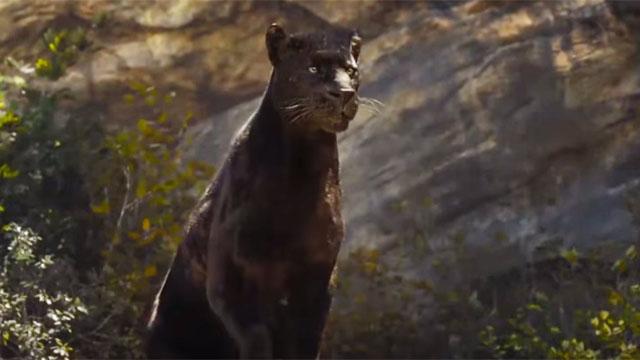 Foto dan Video The Film The Jungle Book
