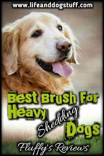 Best Brush for Heavy Shedding Dog - Fluffy's reviews