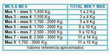 Adelgazar 10 kilos en 6 meses de gestacion