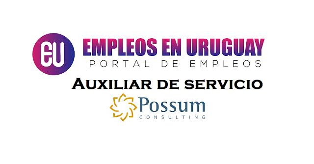 Auxiliar de servicios possum consulting