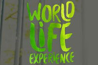 World Life Experience worldlifeexperience.com