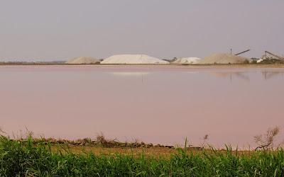 Sal de la Camarga. Salinas de Aigües Mortes