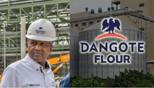 Dangote Is Selling Off His 'Dangote Flour Mills' Among Others