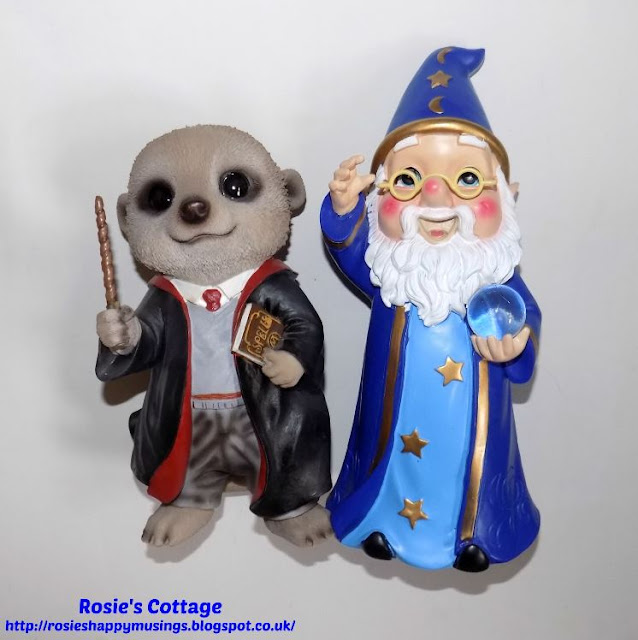 Introducing Albus Gnome and Harry Meerkat