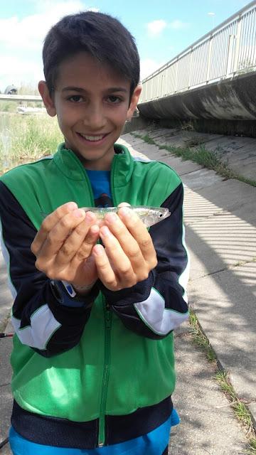 Pesca de Alburno San Jerónimo