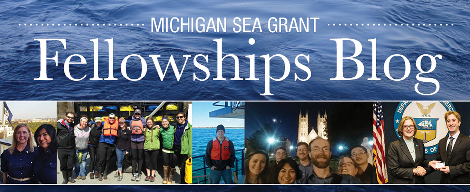Michigan Sea Grant Fellowships