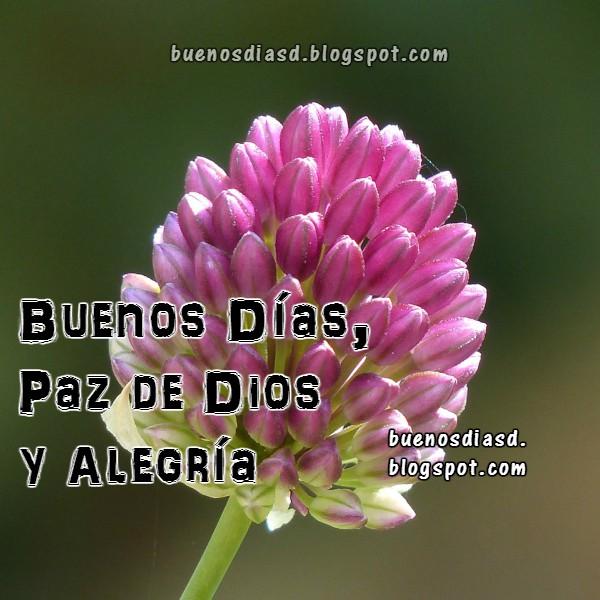 Reflexión corta de un buen día día con la paz de Dios,imagen con frases de la mañana, inicio del día