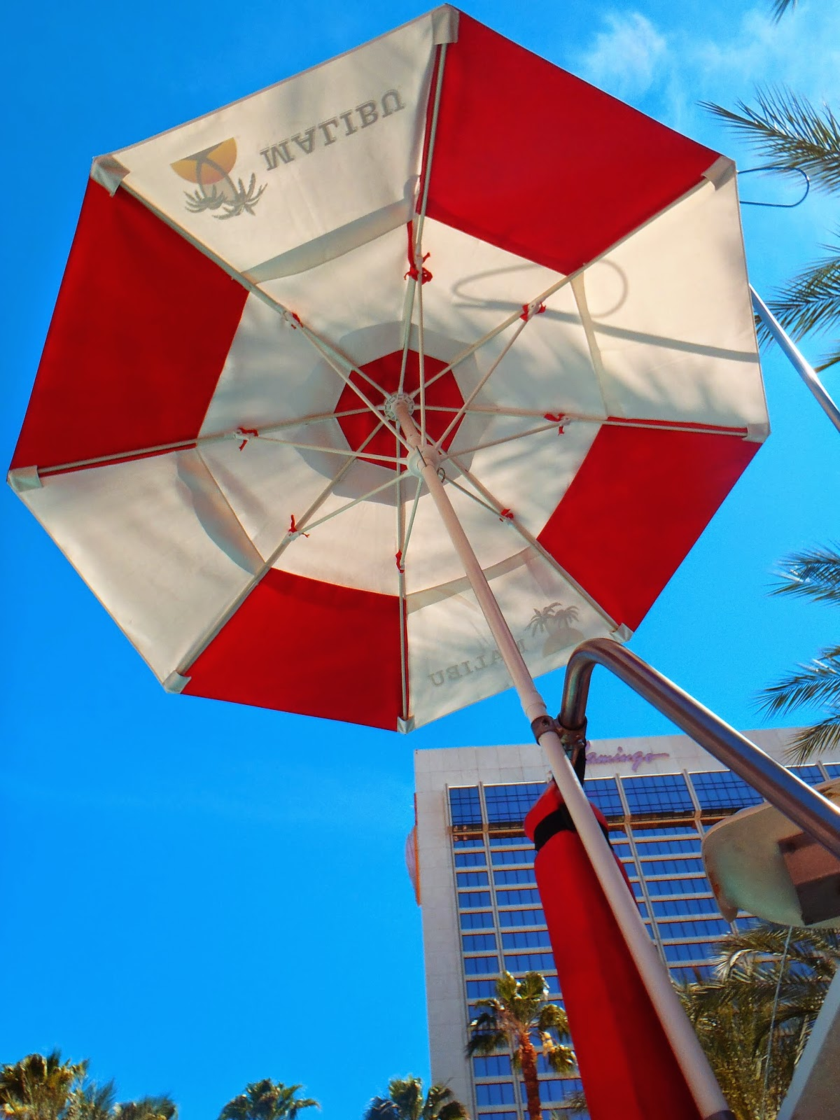 looking up into the sun umbrella