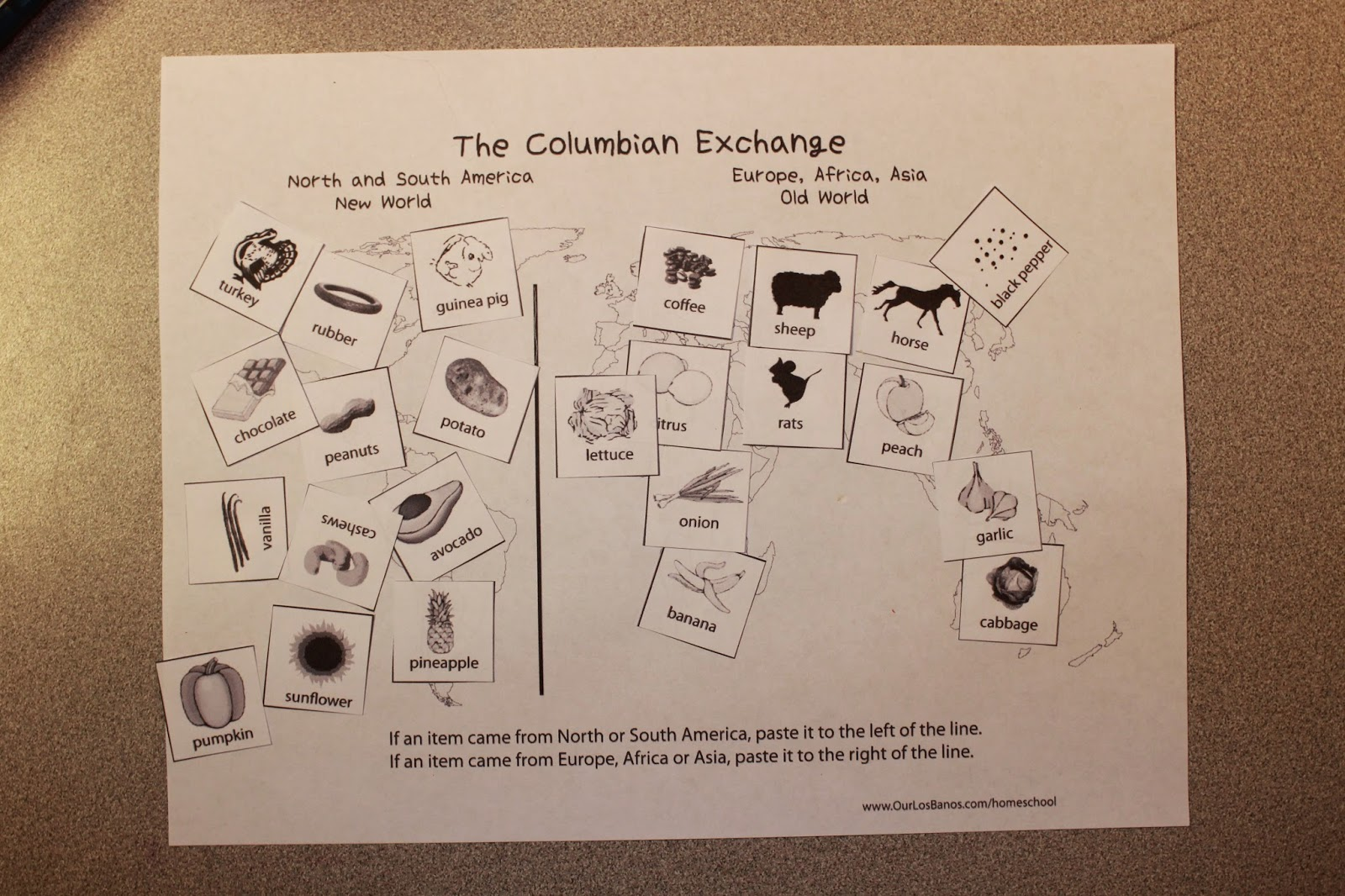 columbian exchange diagram cuts of lamb highland heritage homeschool learning about the taíno