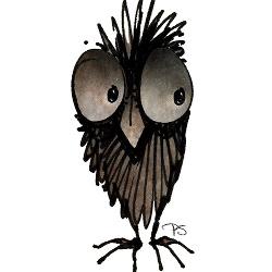 funny owls, owls