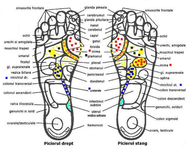 Durere laba picior drept- articulatie umflata | Forumul Medical ROmedic