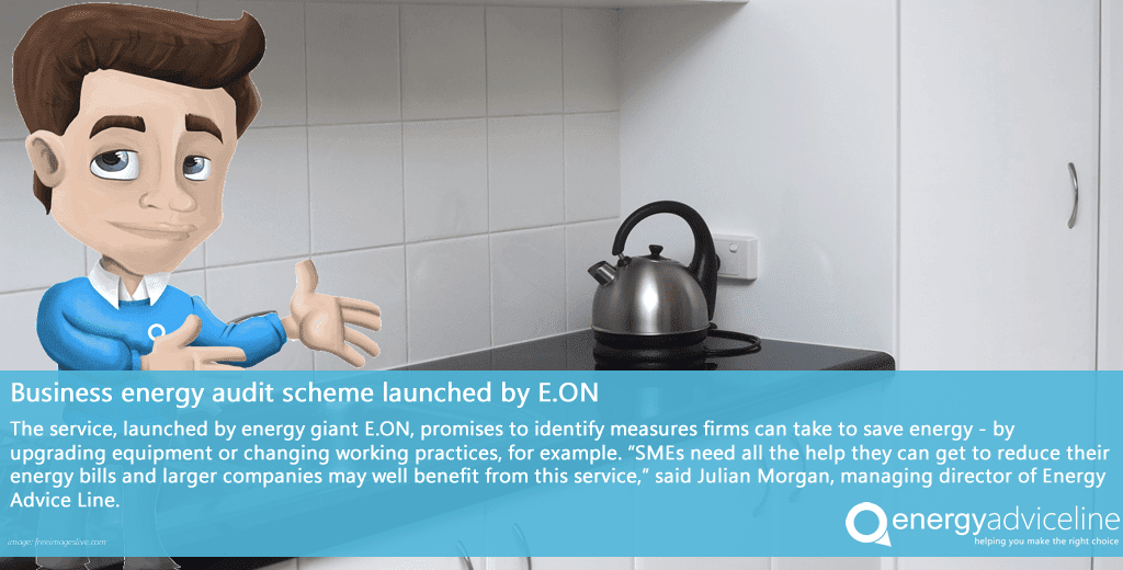 Business energy audit scheme launched by E.ON