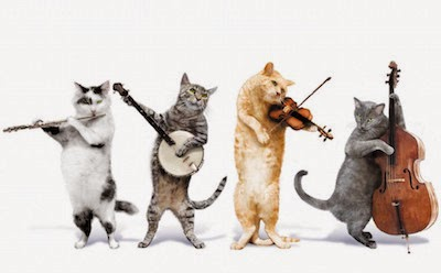 Music for Cats image