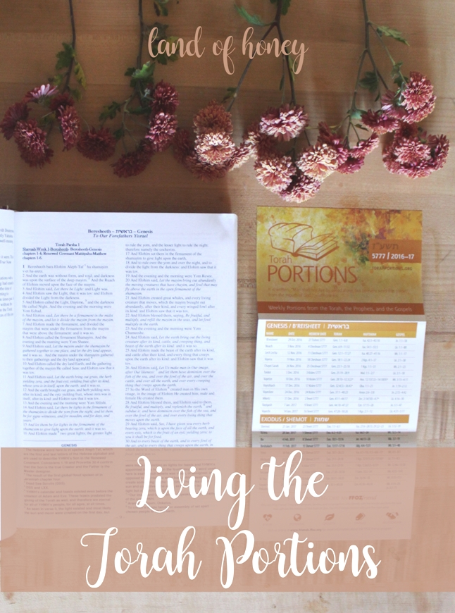 Living the Torah Portions - activities, recipes, and DIYs for better understanding of Scripture