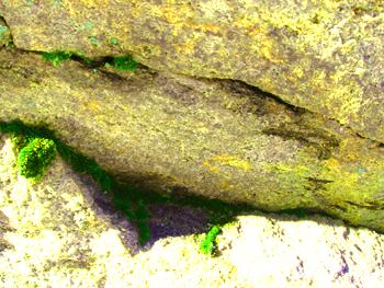 Kellanvärinen kivi, jolla on ikään kuin silmät ja suu, joka on vääntynyt vinkeään hymyyn