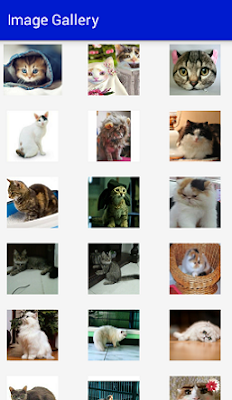 Screenshot_GridView Example