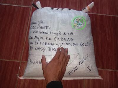 Benih pesanan SOEKAMTO Surabaya, Jatim  (Sesudah Packing)