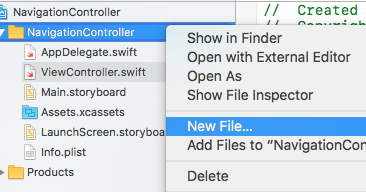 Study Swift: UINavigationController() - Embed the view