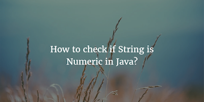 How to check if a String is numeric in Java