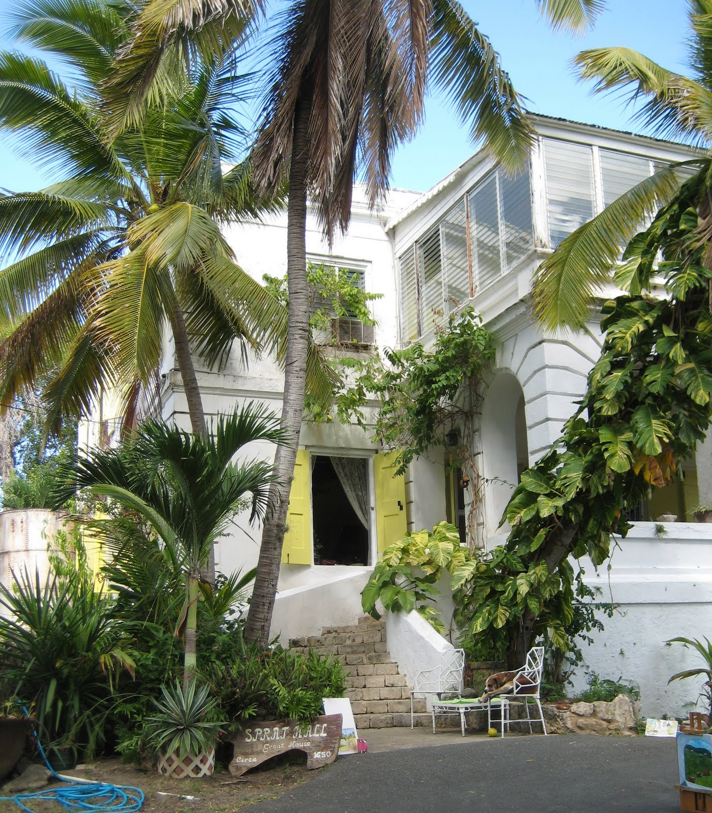 The Palletteers Of St. Croix: Sprat Hall Plantation