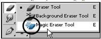 Adobe Photoshop Magic Eraser Tool_Image0012