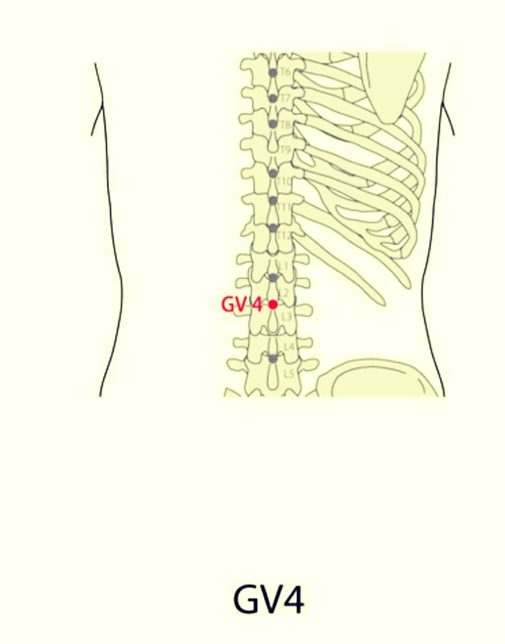 SaroEpic Acupuncture : Acupuncture Points for Polycystic ...