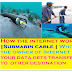 How the internet work through cable | Who is the owner of Internet | how your data gets transfered to other destination