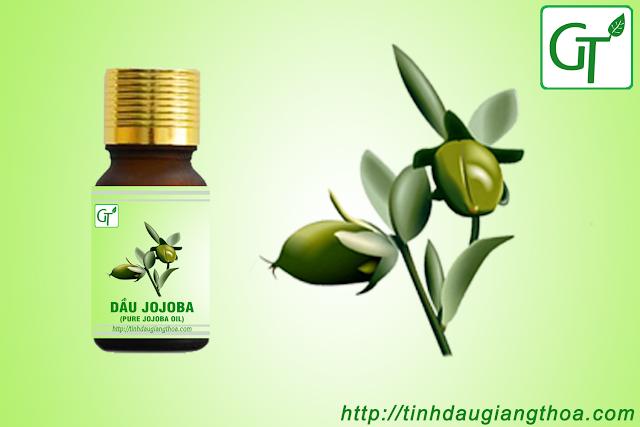 Dầu jojoba nguyên chất (Pure Jojoba oil)