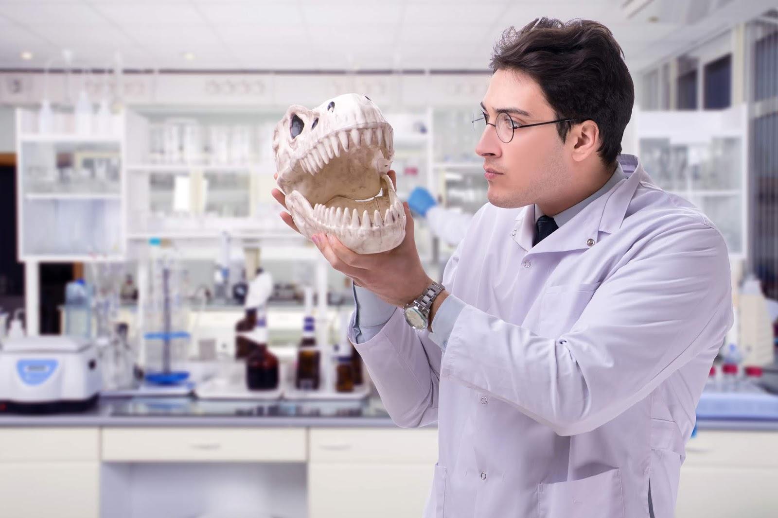 Paläontologen gelingt Herstellung künstlicher Dinosaurierknochen [Video]
