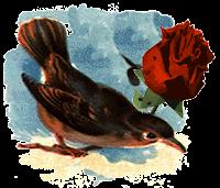 """Momotlalkali: Burbujas de Lectura: """"El ruiseñor y la rosa"""