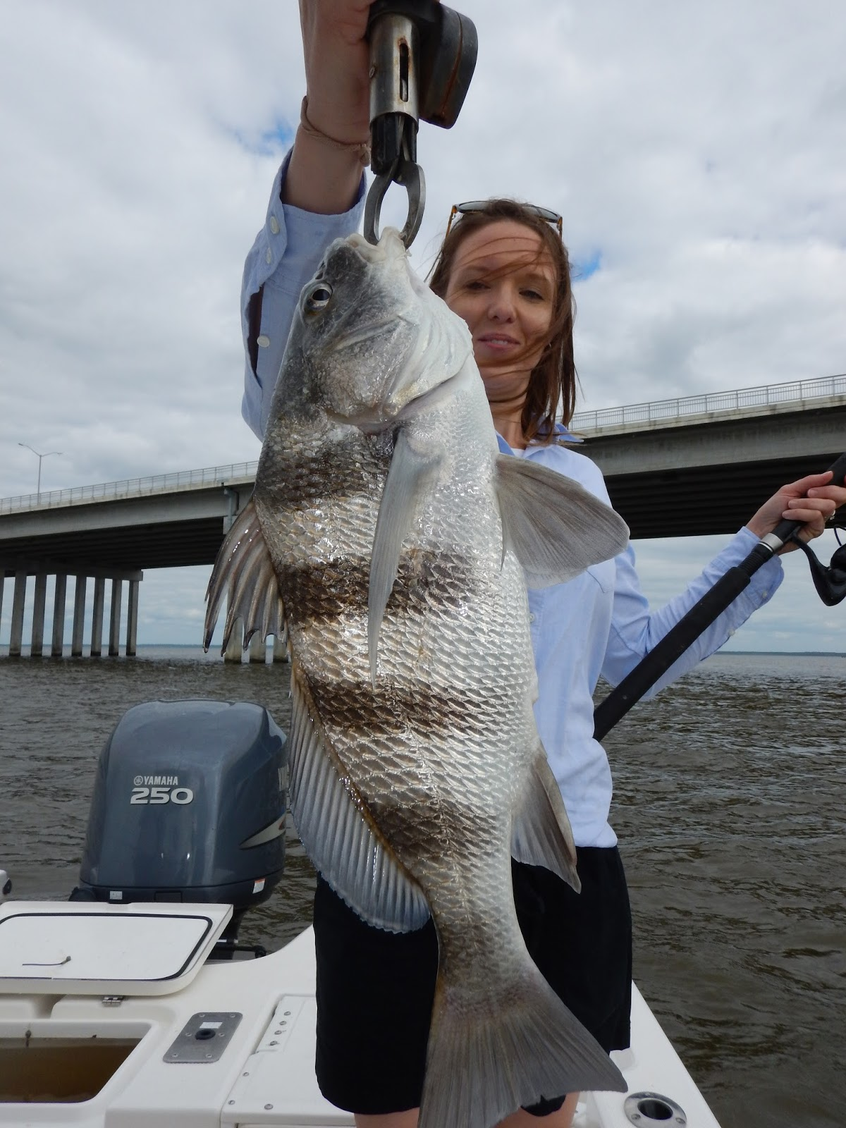 A taste of the south drum trout reds sheepshead for Mississippi fishing charters