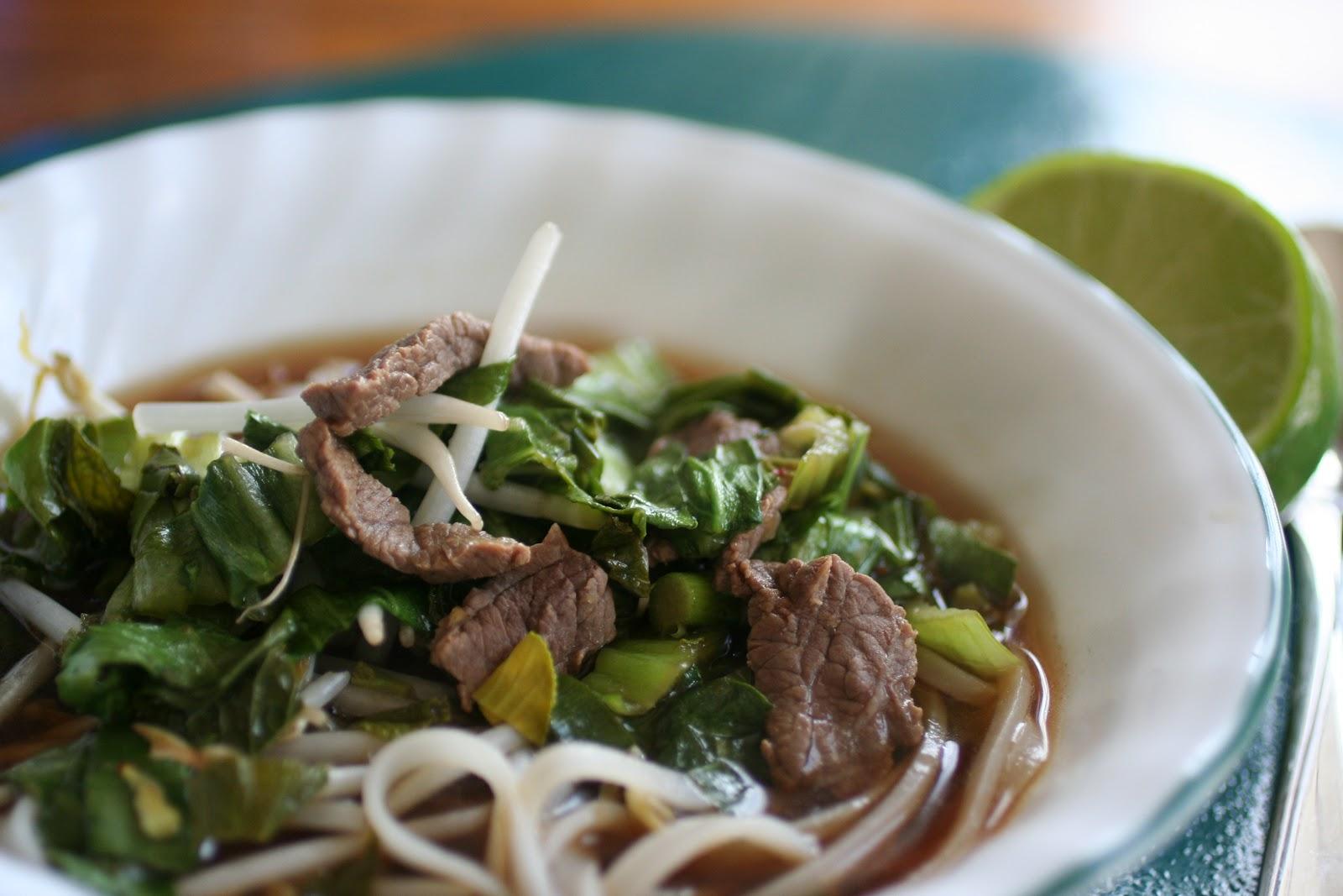 Asian Beef Noodle Soup 73