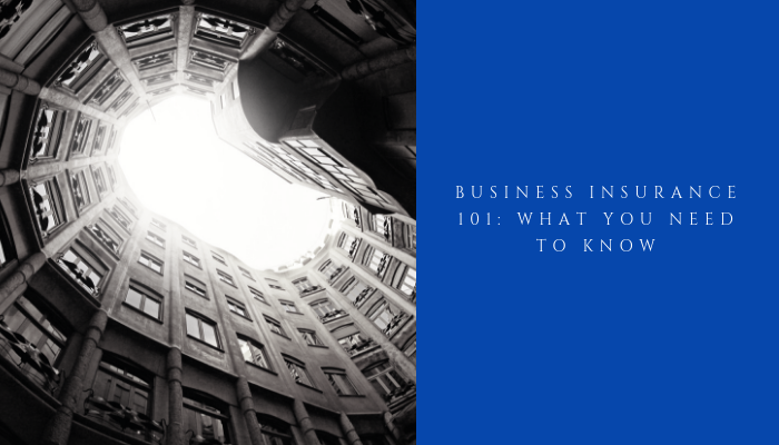 Business Insurance 101: What You Need to Know