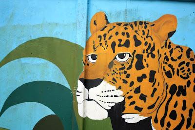 Jaguar en Tortuguero